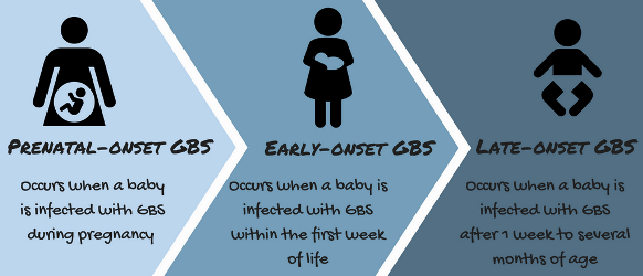 onset of Group B Strep can be prenatal, early (1st week), or late (1st months)