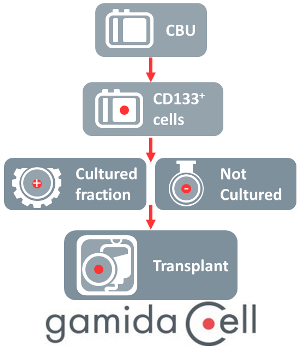 Graphic of Gamida Cell manufacturing for Omidubicel