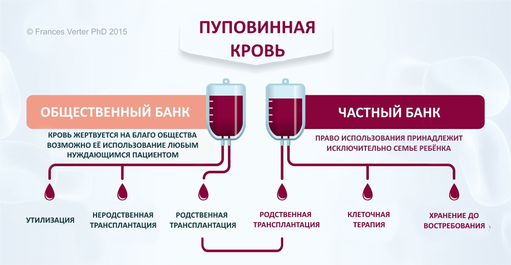 Types of cord blood banks