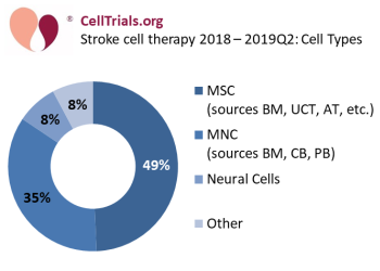 Stroke cell therapy 2018 - 2019Q2: cell types
