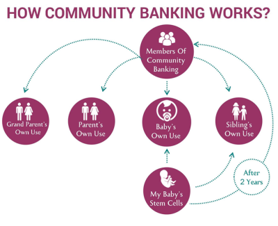 Flow chart of Community Banking model from LifeCell International