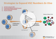 STEMCELL Technologies resource