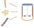 Growing MSC in Bioreactors