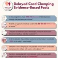 Delayed Cord Clamping: Evidence-Based Facts (icon)